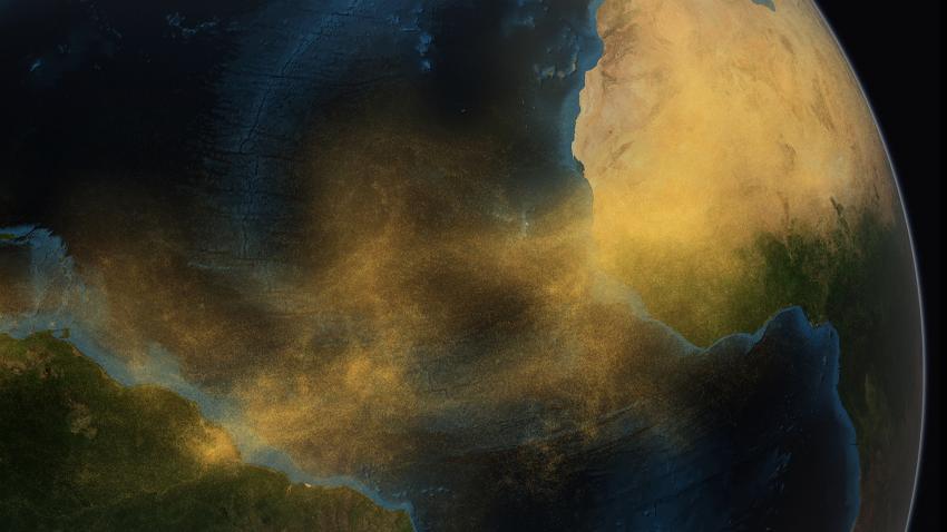 Amazon rainforest research paper