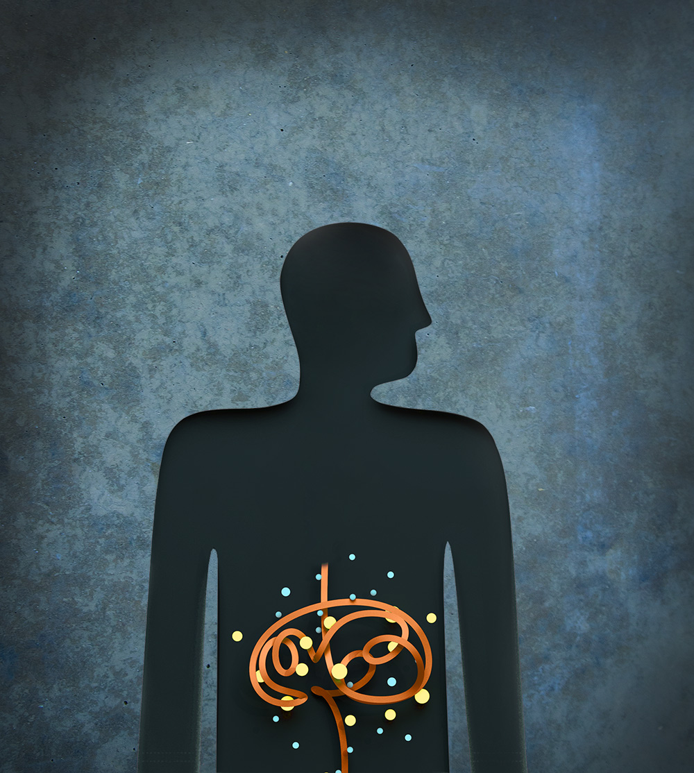 Gut microbes play an important role in modulating metabolites that