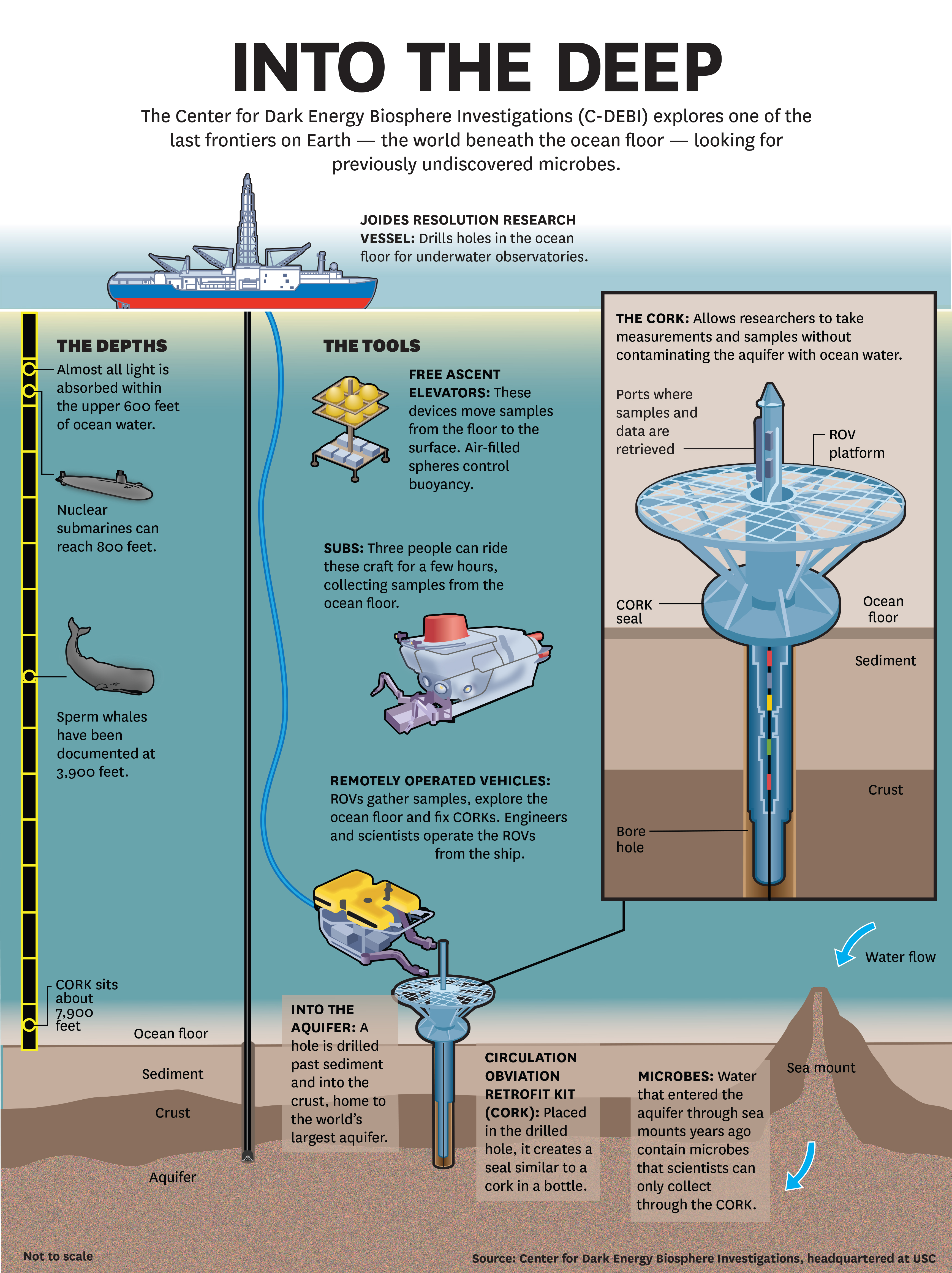 Exotic Microbe Discovered In Undersea Aquifer