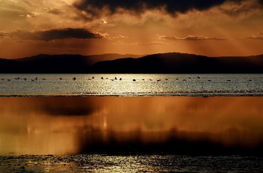 Slideshow: Salton Sea, California's largest lake, threatened by ...