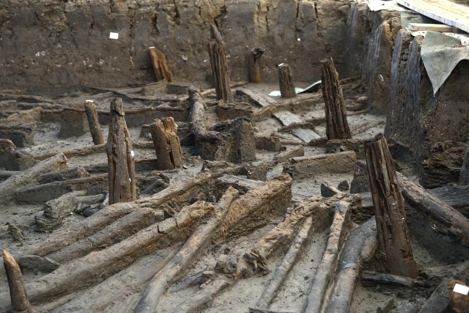 Bronze Age village preserved in mud discovered in Peterborough