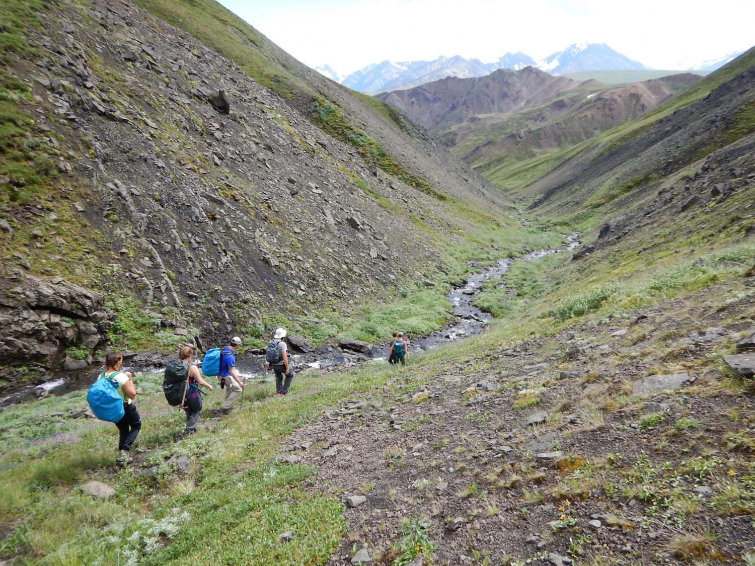 Researchers look for more evidence of dinosaurs in Denali