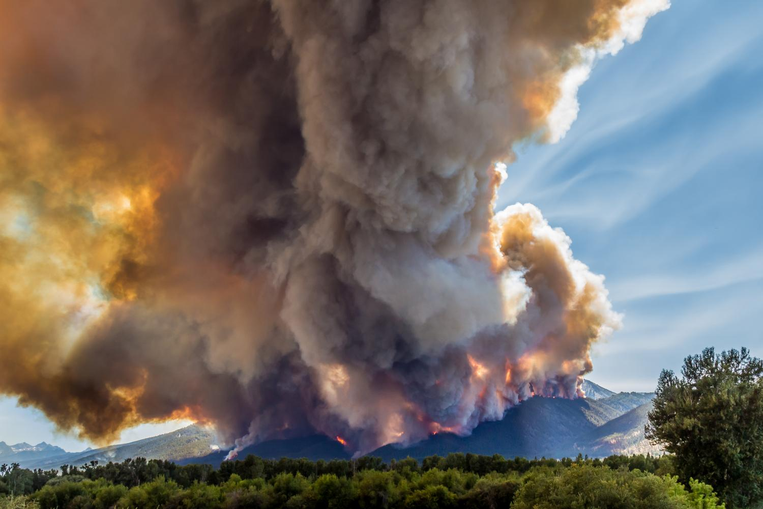 Climate change doubles US forest-fire burn areas