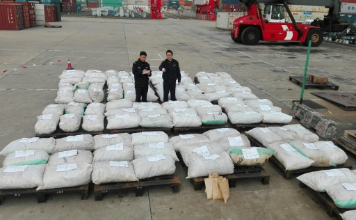 China Seizes 3.4-Ton Haul of Illegally Trafficked Pangolin Scales