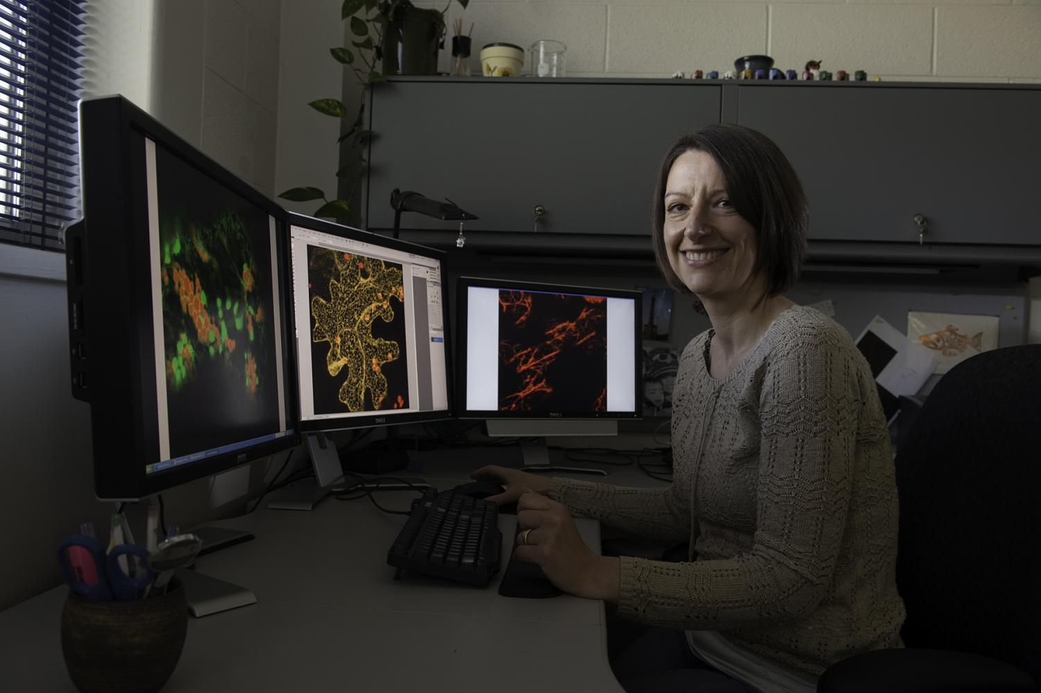 Discovering what keeps cellular cargo on track