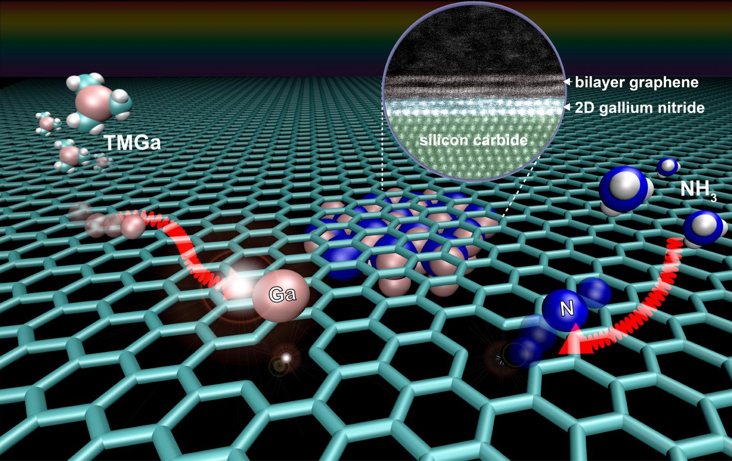 graphene key to growing 2 d semiconductor with