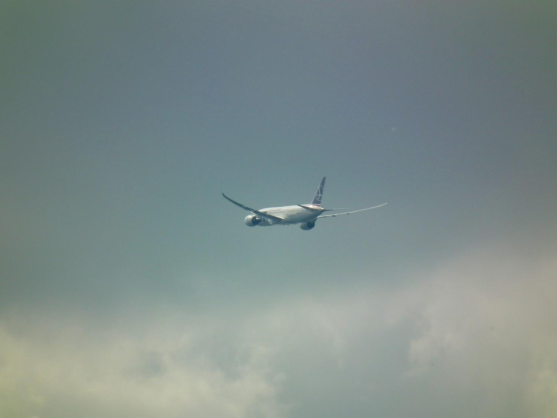 Air Travel Turbulence Reports