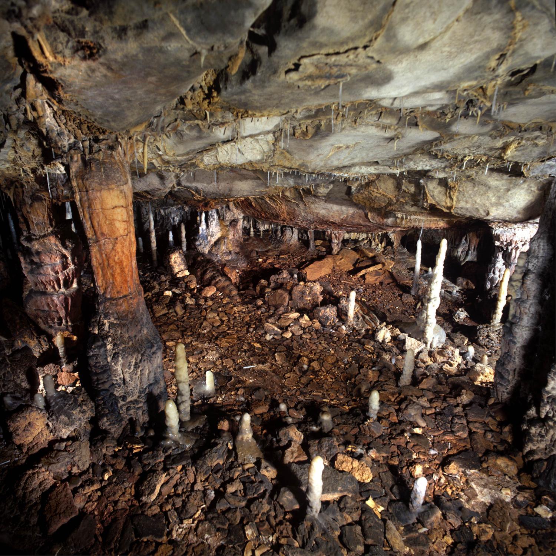 paleolithic caves - photo #7