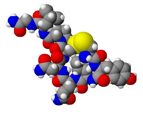 Study shows oxytocin spray promotes social bonding