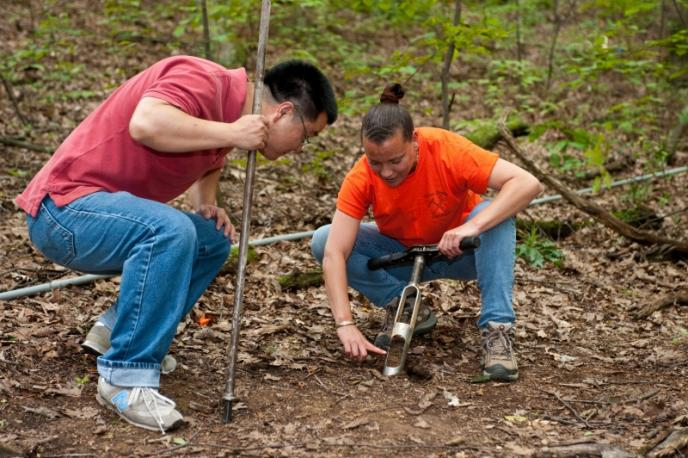 Iron legacy leaves soil high in manganese for Soil research impact factor