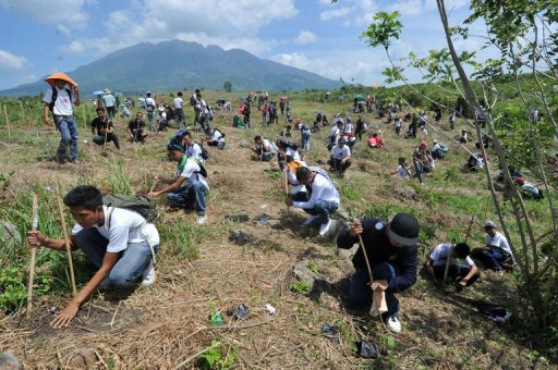 Tree-planting world record set in Philippines