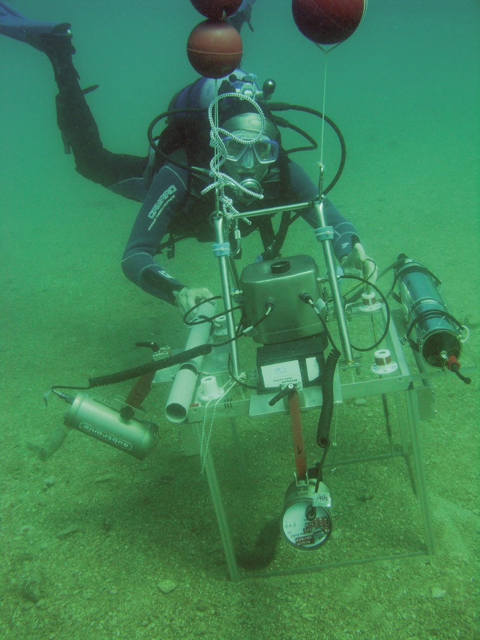 Without oxygen, 'nothing goes' -- Marine biologists get to ...