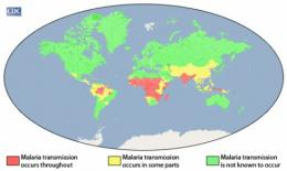 Hope for malaria may be inside African mosquitoes