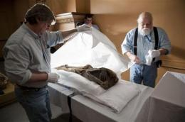 Hunt for bird mummy in Conn. comes up empty