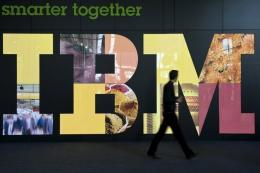 IBM said Netezza, a publicly held company based in Massachusetts, will expand IBM's business analytics sector