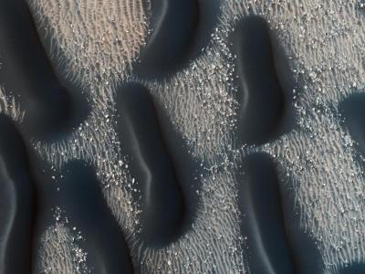 Image: Dark dune fields of proctor crater, Mars