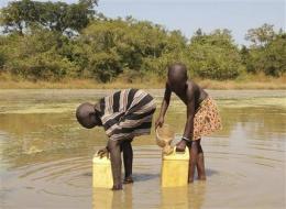Jimmy Carter vs. guinea worm: Sudan is last battle (AP)