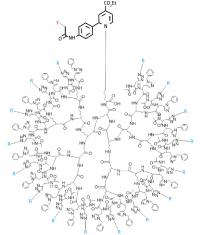 Large tree-like sugar clusters provide potential in vivo probes for cancer cells
