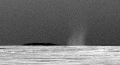 Martian Dust Devil Whirls Into Opportunity's View