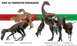 Meat-eating dinosaurs not so carnivorous after all