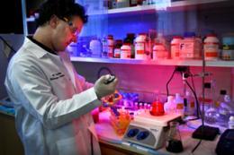 Раковым клеткам можно приказать самоуничтожиться
