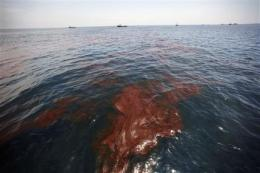 More of Gulf closed to fishing because of spill (AP)