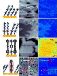 Nanoscale probe reveals interactions between surfaces and single molecules