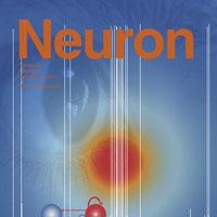 Nano-motors facilitate communication between brain cells
