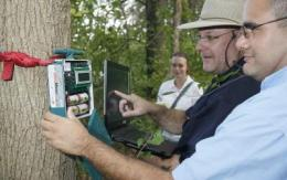 New scientific field will study ecological importance of sounds