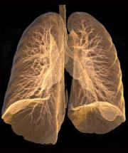New test could identify smokers at risk of emphysema
