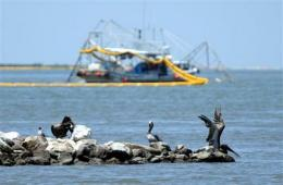 NOAA: Gulf seafood tested so far is safe to eat (AP)