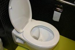NoMix toilets get thumbs-up in 7 European countries