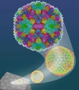 Novel nanotechnology collaboration leads to breakthrough in cancer research