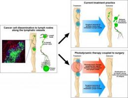 Photodynamic therapy against cancer