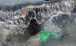 Plastic debris and other trash floats in the ocean