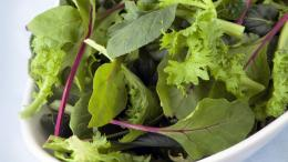 'Prewashed' Salad Still Needs Cleaning