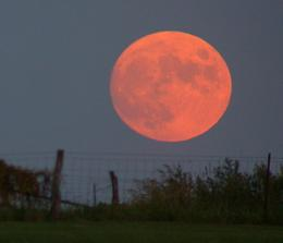 Professor remarks on harvest moon