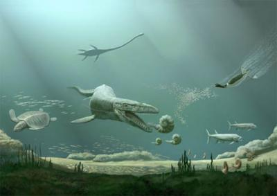 Rare 95 million-year-old flying reptile Aetodactylus halli is new genus, species of pterosaur