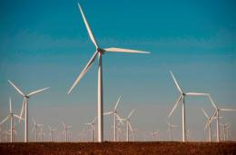 Reports detail global investment and other trends in green energy
