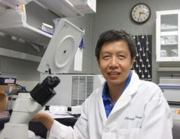 Researcher targets gene regulators on link between arsenic, cancer