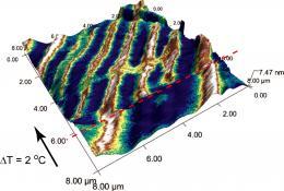 Scientists crack materials mystery in vanadium dioxide