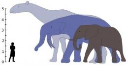 Size of mammals exploded after dinosaur extinction
