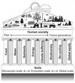 Soil science: Healing our planet's ills from the ground up