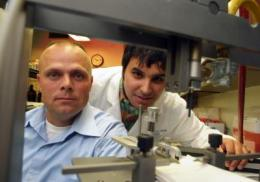 Spice and dye point toward better treatment for traumatic brain injuries