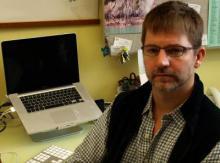 Stickleback genomes shining bright light on evolution