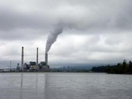 Study: Fish near coal-fired power plants have lower levels of mercury