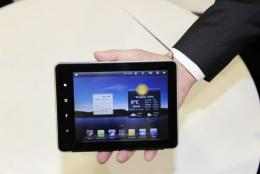 Tablet computers were the hot new products on display at the Consumer Electronics Show in Las Vegas
