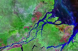 The Amazon: from wetland to river