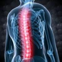 Thousands of New Proteins Discovered in Spinal Fluid