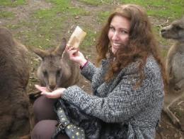 Wastewater's Tasmanian Devil